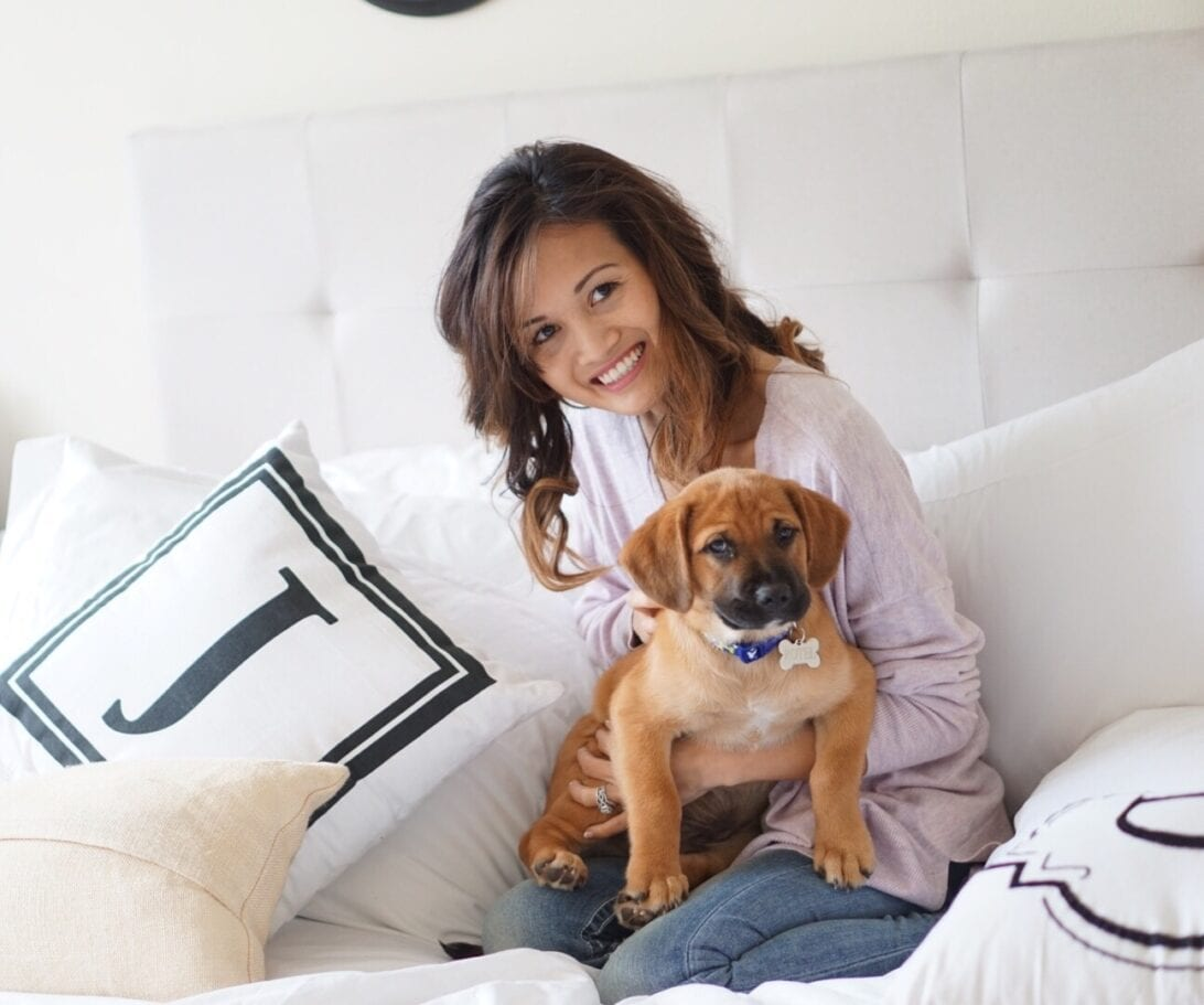 6 Ways to Keep Your Home Smelling Fresh with Pets