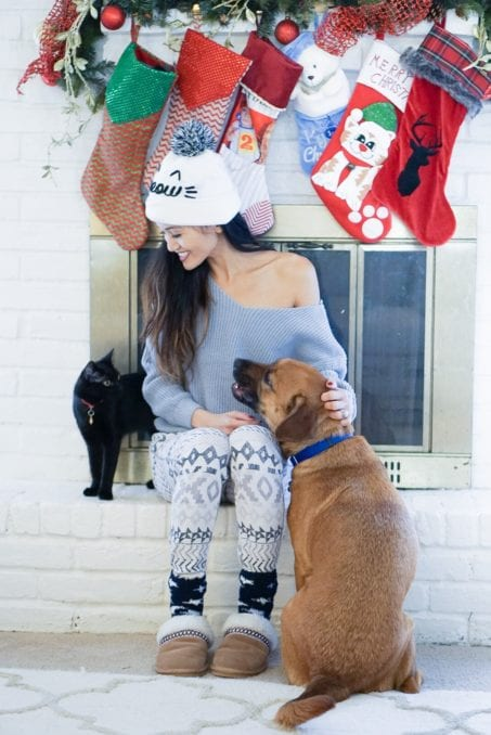 pet lover, cat, dog, pet gift guide, christmas gift guide for pets, anima lover, holidays with pets