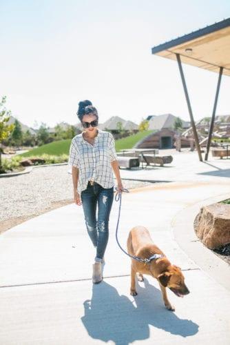 Dog park, Bridgeland, Parkland Village, Lakeland Village