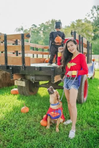 family halloween costumes, pet halloween costumes, Wonder Woman, superman, batman, Justice League