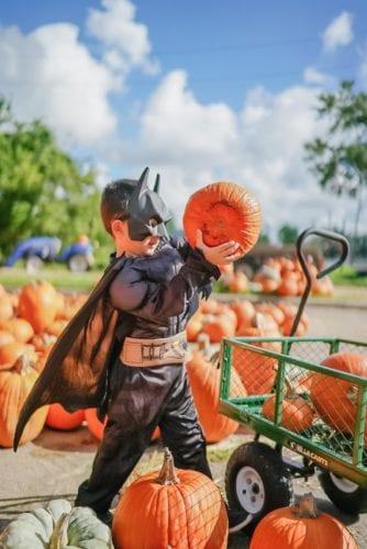 Batman, toddler halloween costumes, pumpkin patch, batman