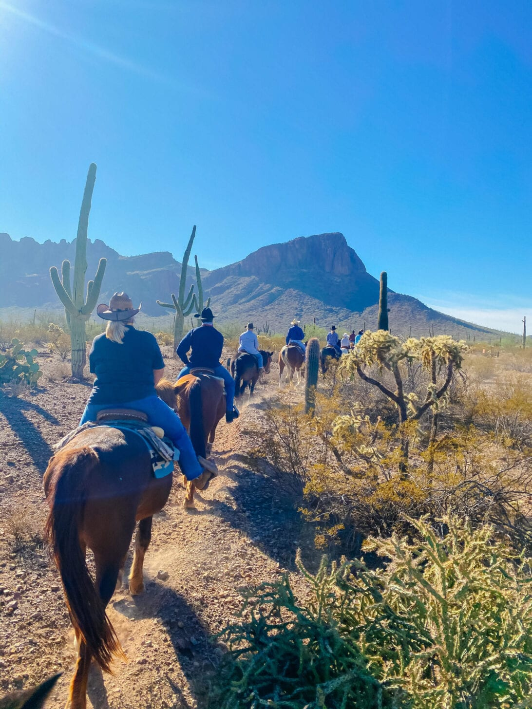 WHITE STALLION RANCH , TRAIL RIDING, HORSE BACK RIDING